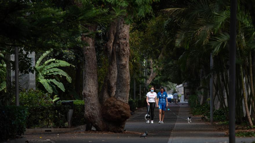 Canarias suma 3 fallecidos y 182 contagios en las últimas 24 horas