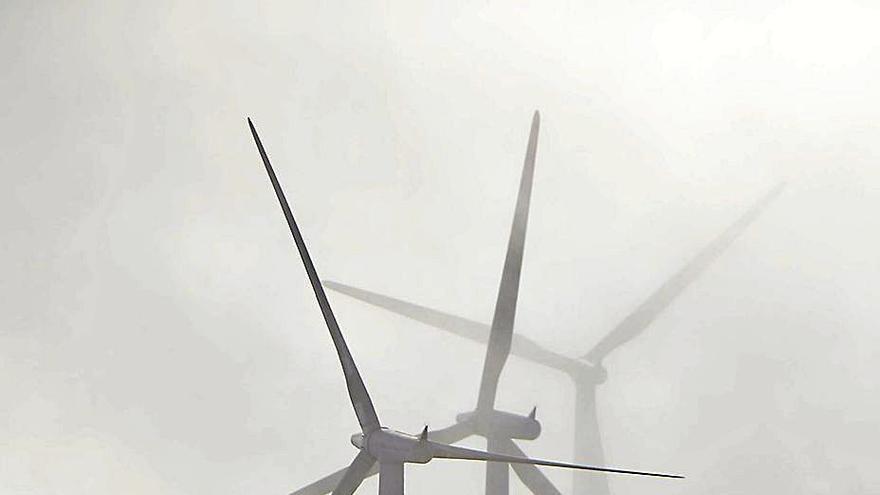 Greenalia, entre los grandes vencedores de la puja de renovables, logra 135 MW eólicos