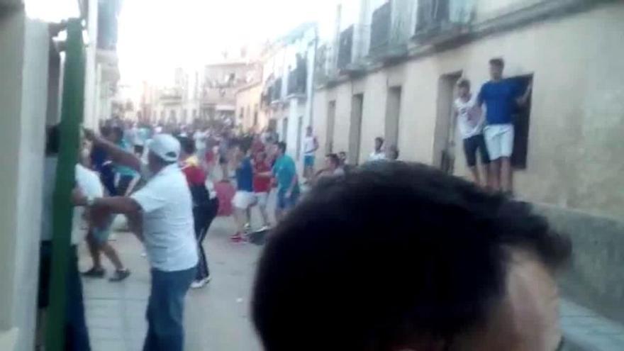 Cogida mortal en las fiestas de Fuentesaúco