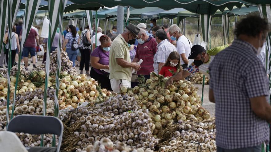 GALERÍA | La Feria del Ajo triunfa en Zamora: buen producto y largas colas para llegar a Ifeza