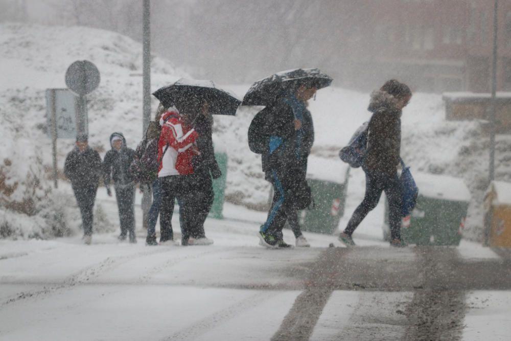 Los efectos de la nevada en Alcoy y comarca