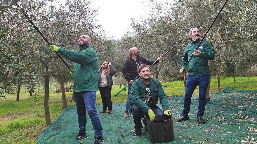 Zahera, Pérez Rey, Castromil y Gerson Iglesias realizan vareo para Aceites Abril