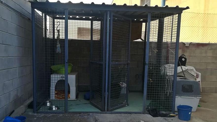 La protectora de Santa Pola lleva  meses sin cobrar por la recogida de animales