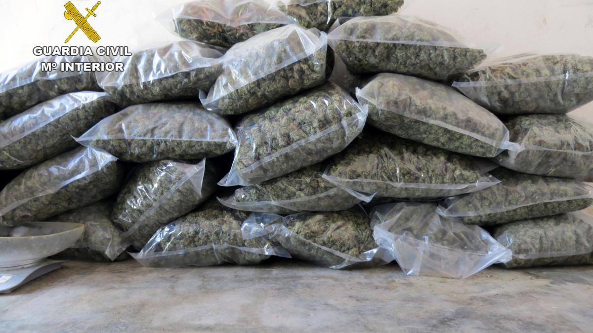 Detenidos en Pliego por una instalación dedicada al cultivo de marihuana