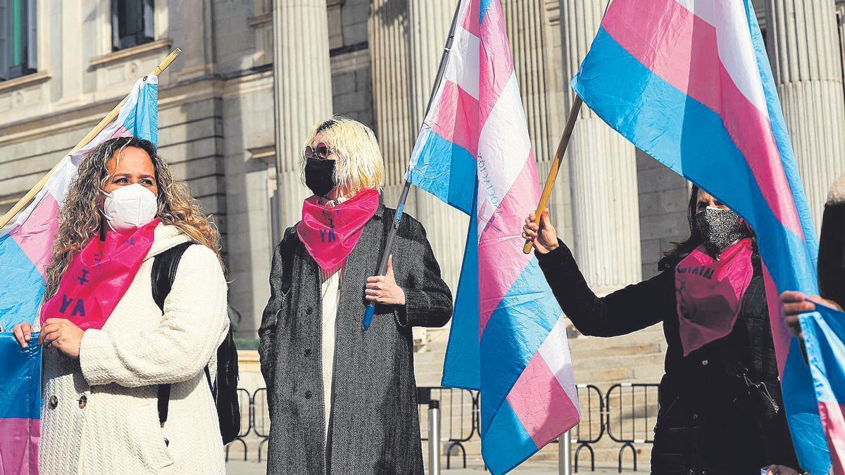 Manifestación en las puertas del Congreso, en Madrid, a favor de la ley Trans.
