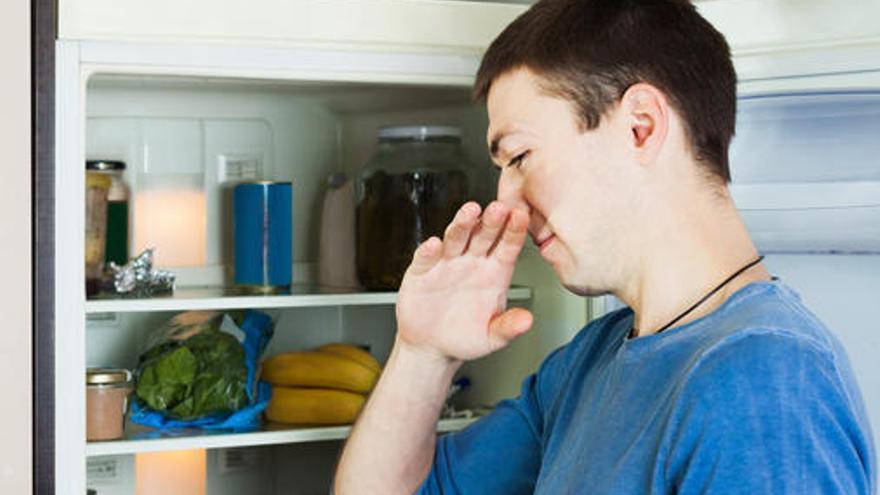Cómo eliminar los malos olores de la nevera