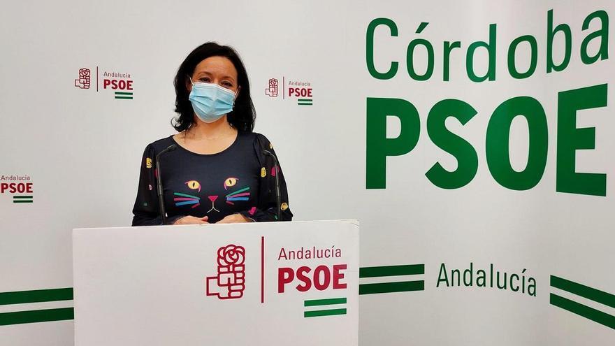 El PSOE propone la creación de un estatuto básico para los municipios pequeños