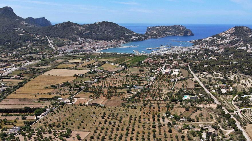 Los Schumacher compran un terreno de 5,4 hectáreas en Mallorca para la cría y monta de 20 caballos