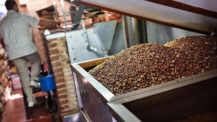 El acopio de millo y trigo en China aumenta el precio del gofio en Canarias