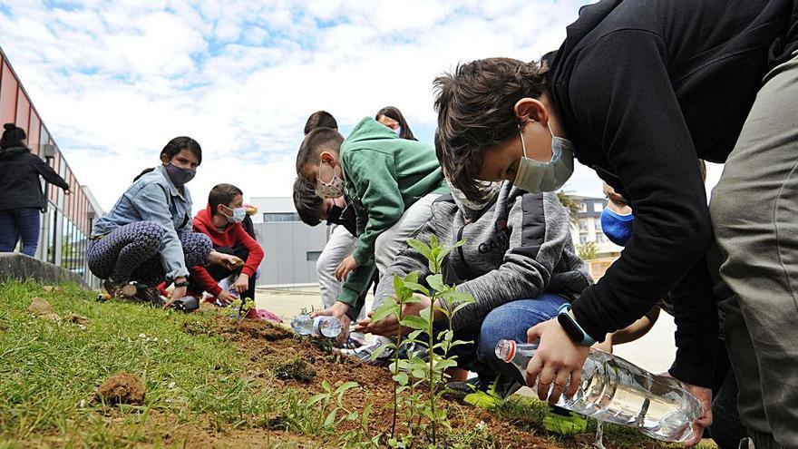 Comienzo de los talleres municipales de medio ambiente