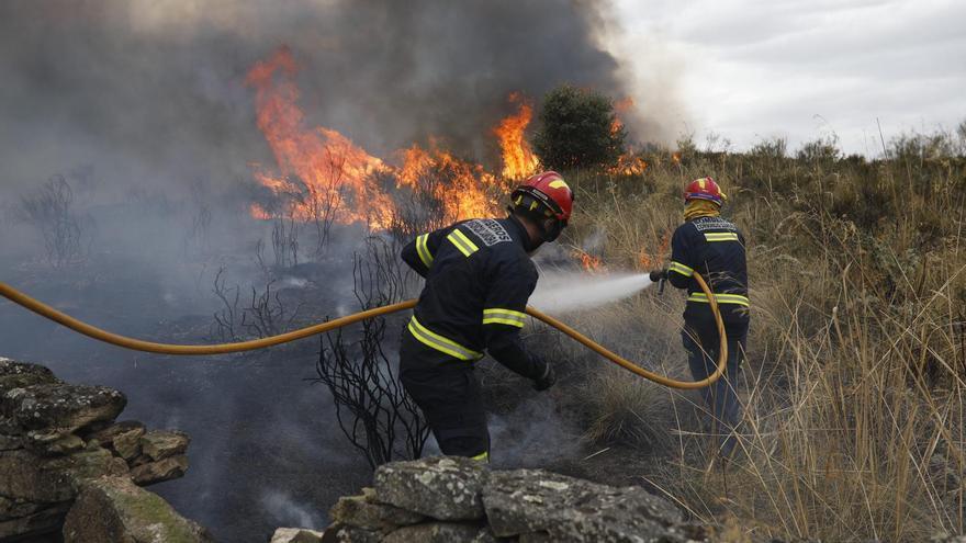 Medio Ambiente investiga si el incendio de Carbajosa fue intencionado