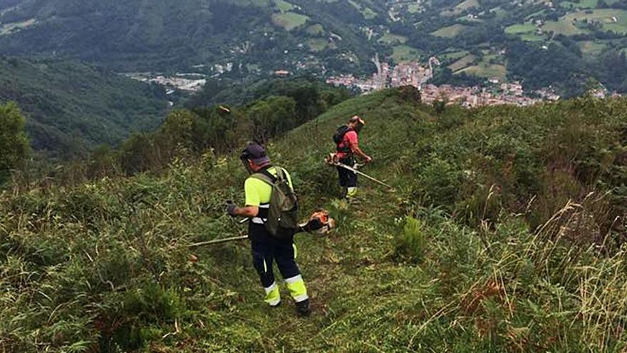 Fondos mineros rurales: 4,9 millones para aprovechar los montes y mejorar pueblos en Laviana, Aller y Redes