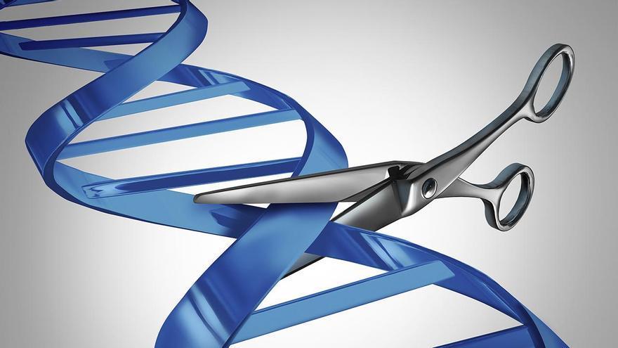 El Nobel de Química deja fuera al alicantino Francis Mojica, padre de la edición genética