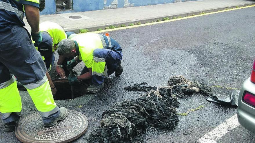 Teidagua extrajo trece toneladas de toallitas de la red el pasado año