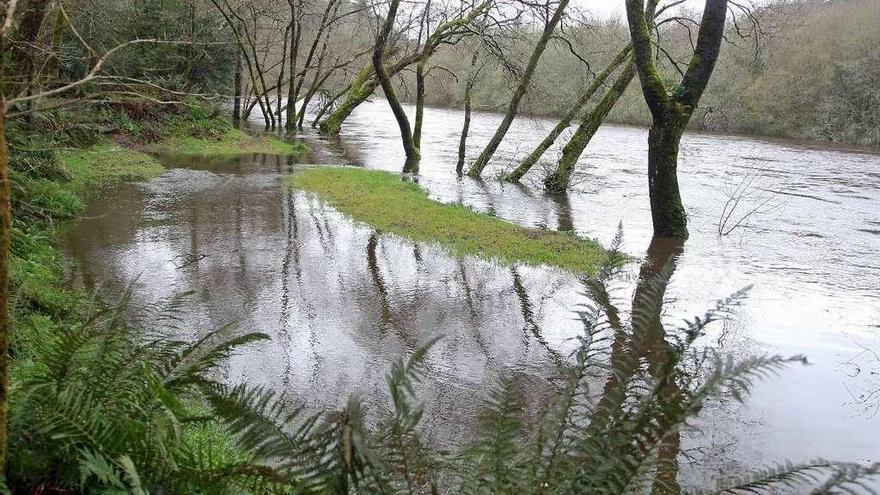 Caídas de árboles, ramas y mobiliario o aludes de tierra causan más de sesenta intervenciones