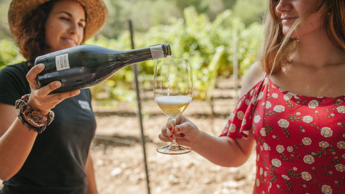 Uno de los vinos ecológicos de la bodega Parés Baltà.