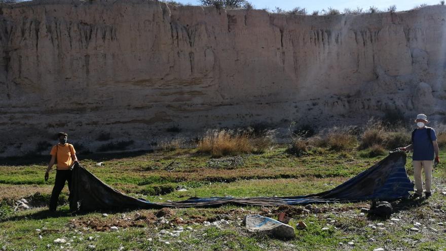 El voluntariado medioambiental de El Campello realiza 16 intervenciones en cuatro meses para limpiar el río Seco