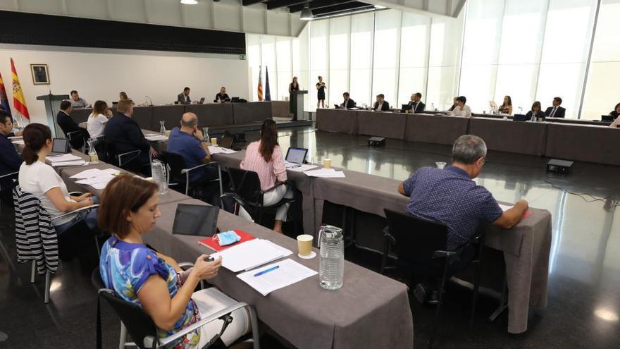 Los concejales de Elche podrán seguir los plenos por vía telemática