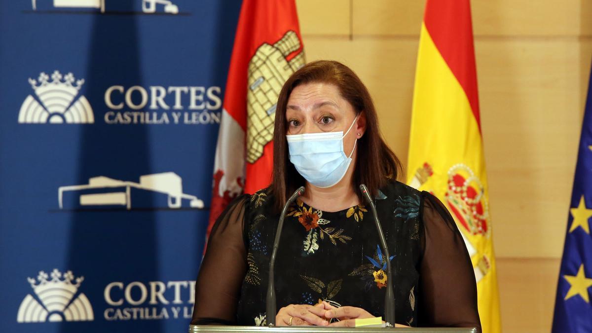 Mercedes Gado, secretaria general del sindicato de enfermería Satse.