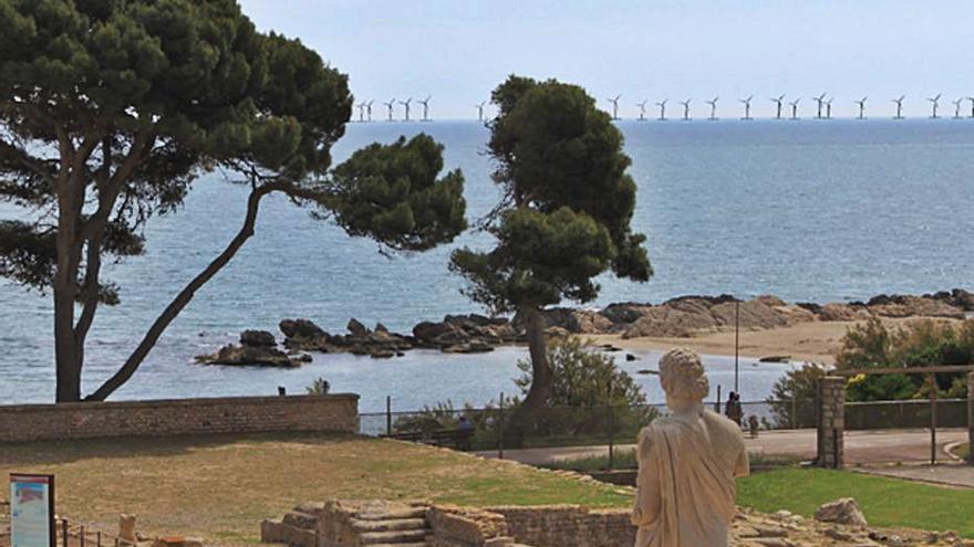 Estudis de cetacis i aus per al parc eòlic marí de Roses