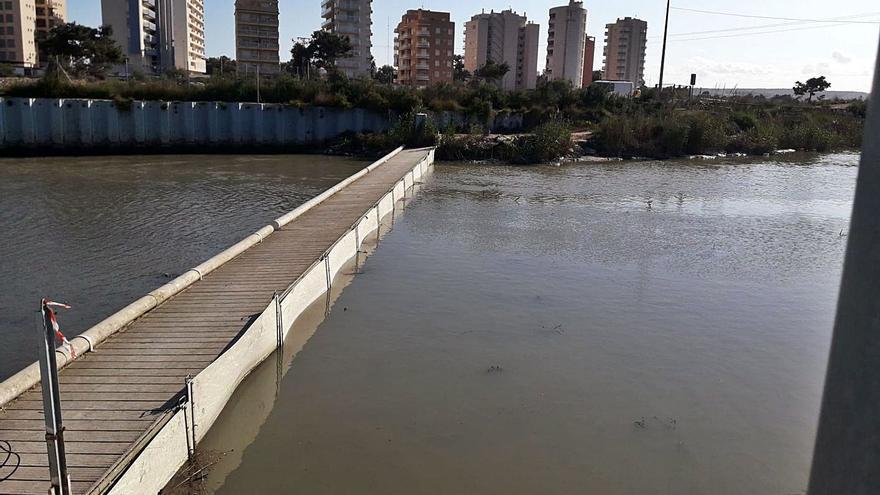 La CHS busca frenar la incesante llegada de basura al río con rejillas en azarbes y acequias