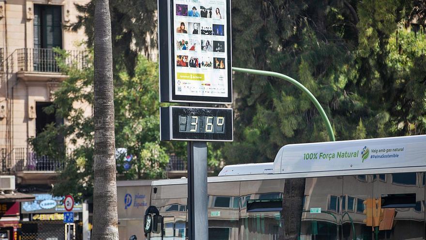 Advierten que las olas de calor son más frecuentes en Mallorca
