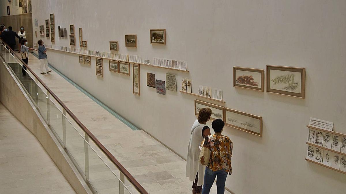 A la izquierda, visión general de la muestra en el Etnográfico. Arriba, el autor José Carlos San Belloso y abajo el título de la exposición. | José Luis Fernández