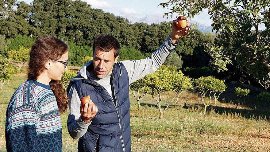 Permakultur auf Mallorca: Willkommen im Obstgarten