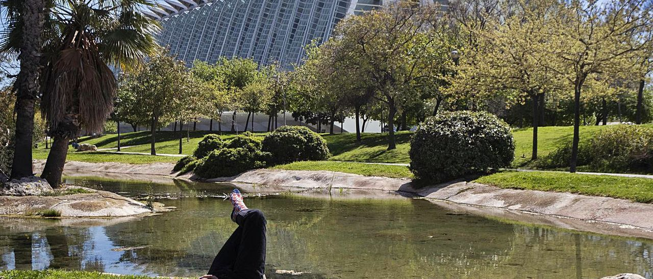 Aspecto del Jardín del Turia a la altura de la Ciudad de las Artes y las Ciencias.    G. CABALLERO