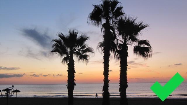 Playa de Torrelamata.
