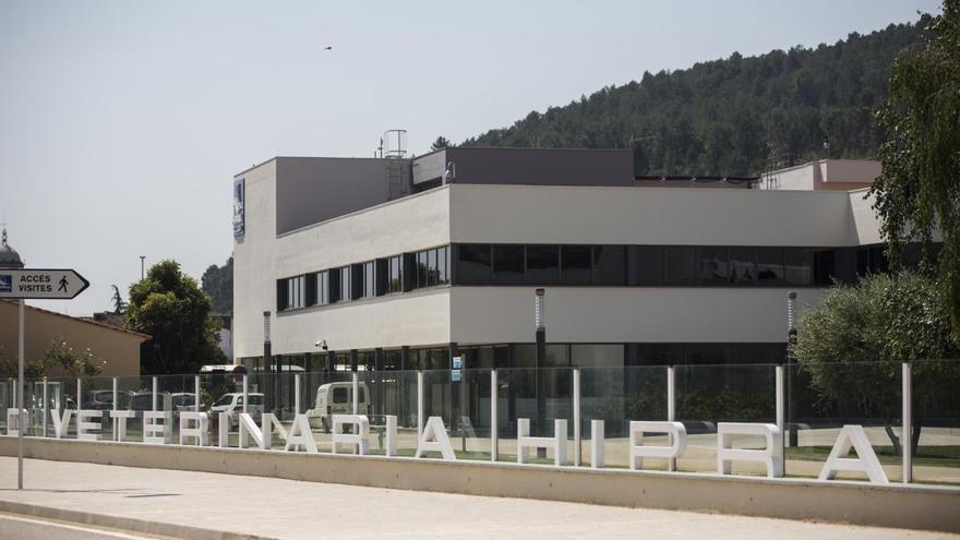 Hipra rebrà finançament de la UE per liderar un projecte d'investigació sobre la covid-19