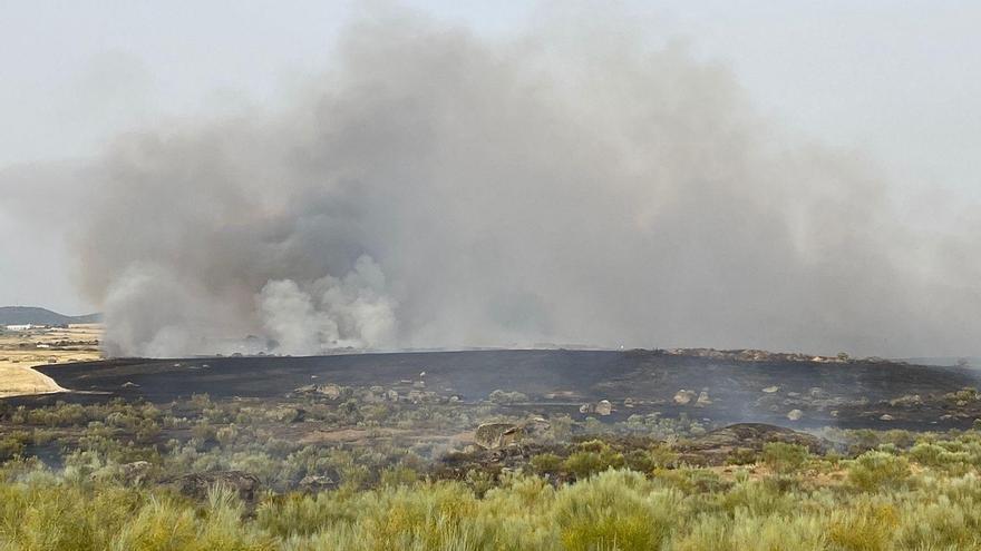 El incendio de Malpartida de Cáceres que ha sido declarado de nivel 1 de peligrosidad