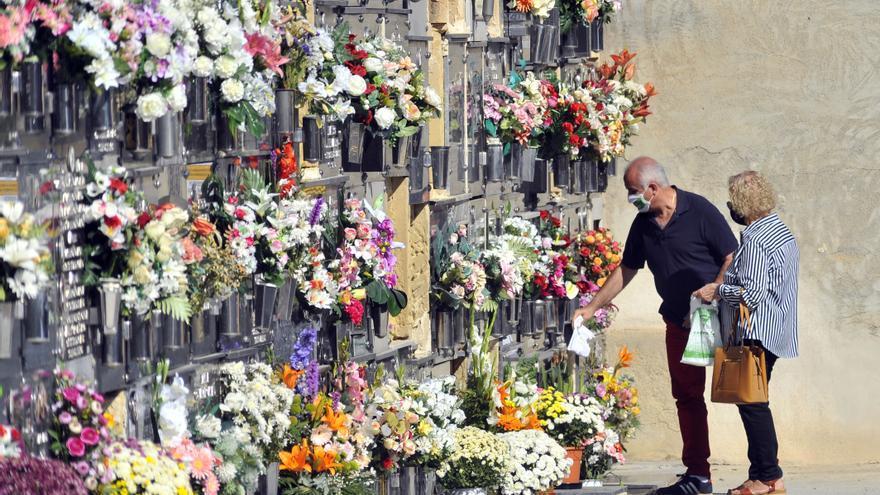 Día de Todos los Santos en Elche: Un atípico domingo en los cementerios