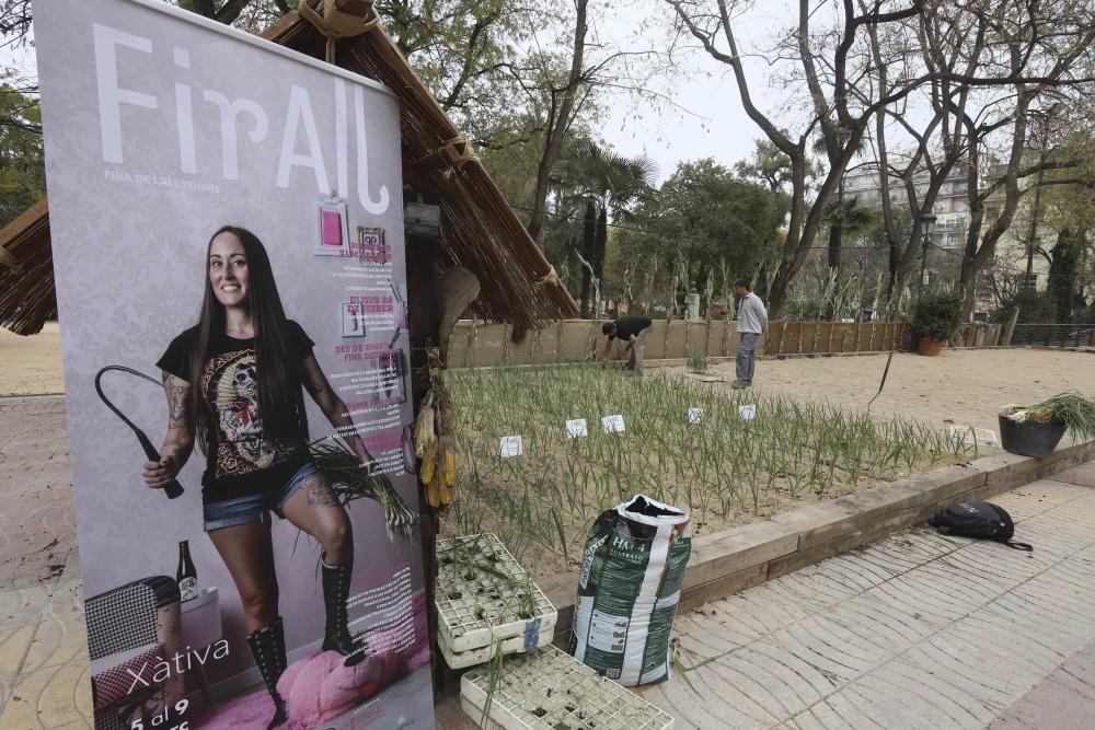 FirAll para escolares en Xàtiva