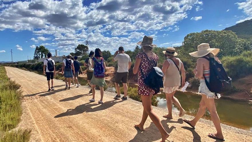 Excursiones para descubrir las maravillas del Parque Natural de ses Salines de Ibiza