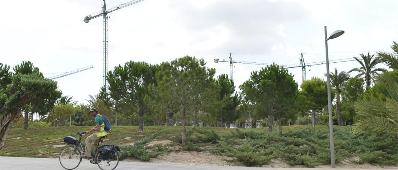 Las grúas se han convertido en parte del paisaje habitual del campus durante los últimos tiempos.