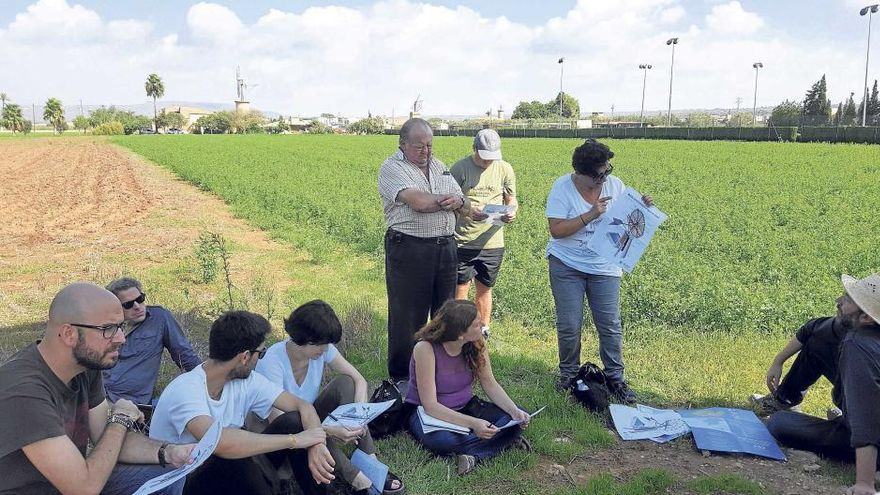 Sant Jordi, un parque agrario con futuro