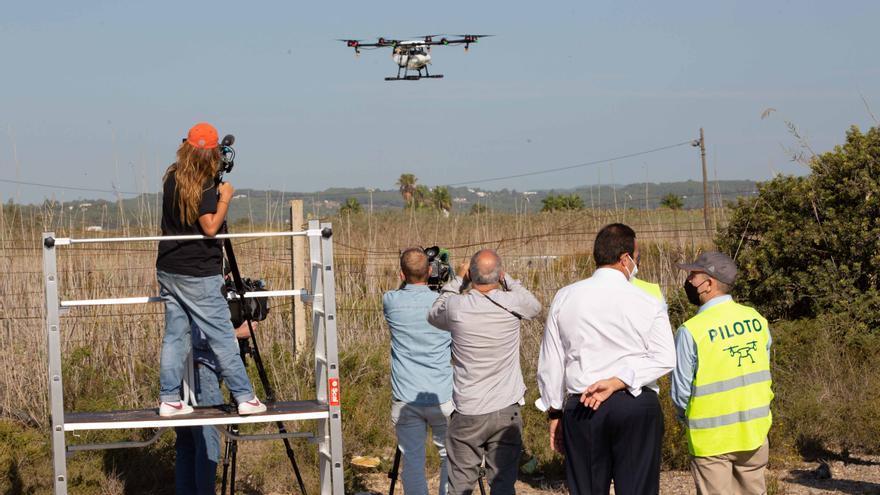 Drones contra mosquitos en ses Feixes de Ibiza