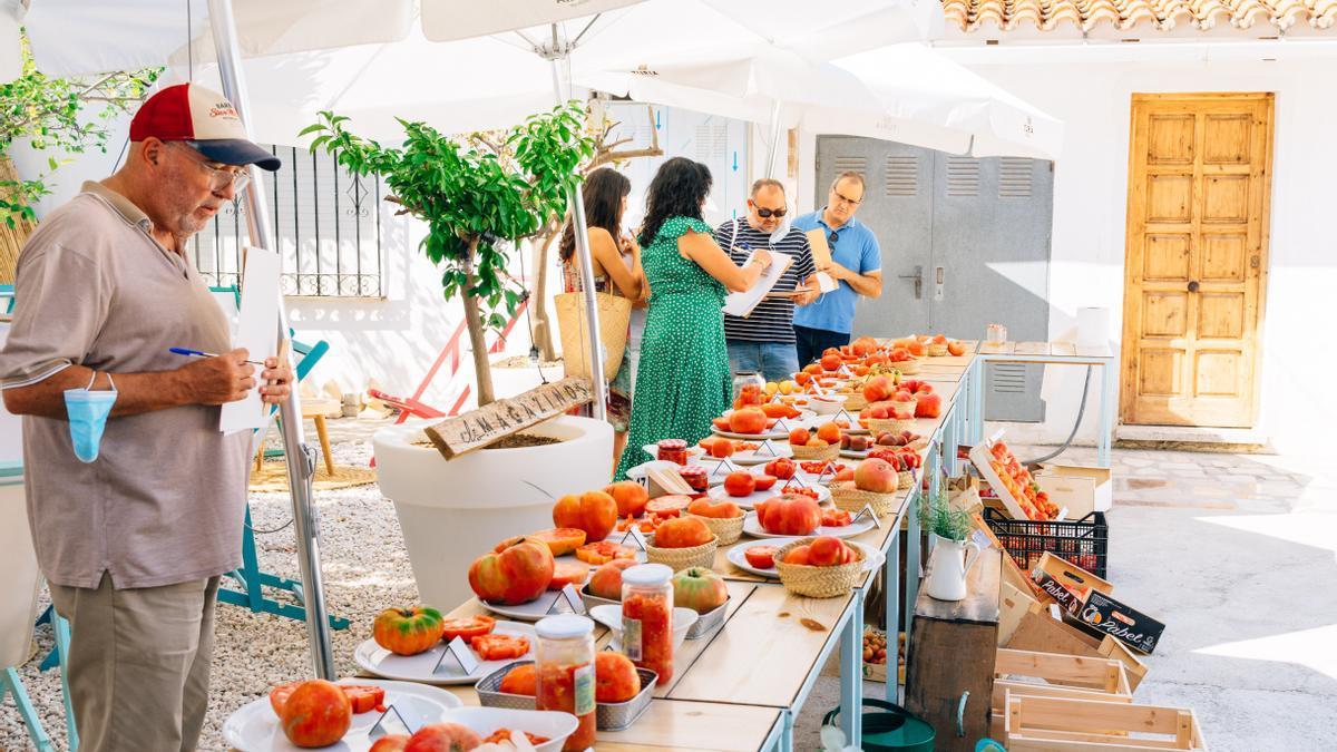 El jurado examina los tomates del concurso del pasado año