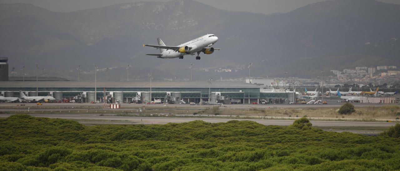 Un avión vuela por el espacio protegido de la Ricarda, en El Prat de Llobregat, en Barcelona.