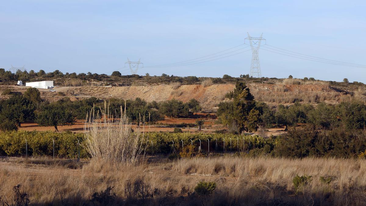 Los restos óseos han sido hallados en un sendero del término municipal de Picassent.