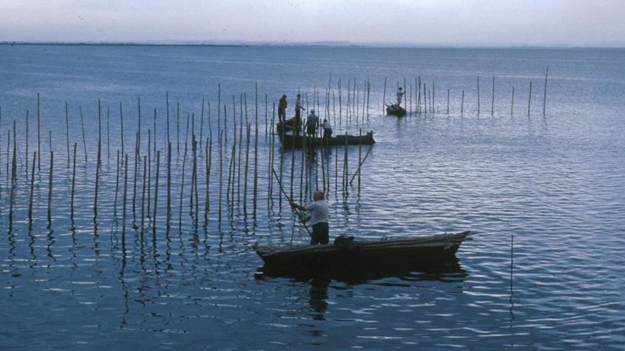 El ayuntamiento rebaja el canon a los pescadores de l'Albufera