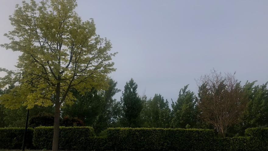 El tiempo en Zamora hoy, viernes | A más de 20 grados