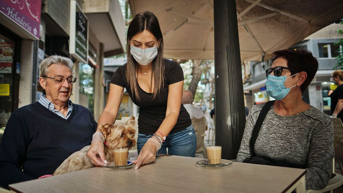 Una camarera sirve una mesa en una terraza de la capital tinerfeña.