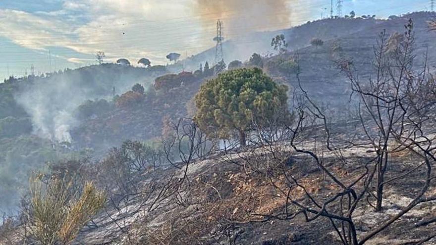 Els Mossos sospiten que l'incendi de Collserola va ser provocat
