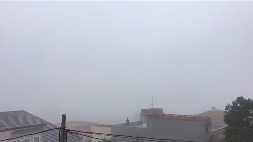 La niebla invade Tacoronte