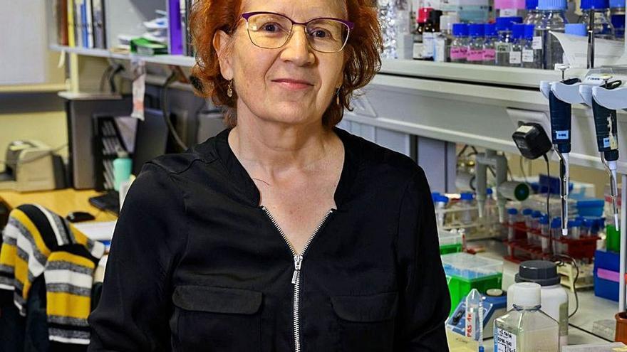 """Margarita del Val: """"Si la relajación es total y hay otro bombazo, veremos a los jóvenes en los hospitales"""""""