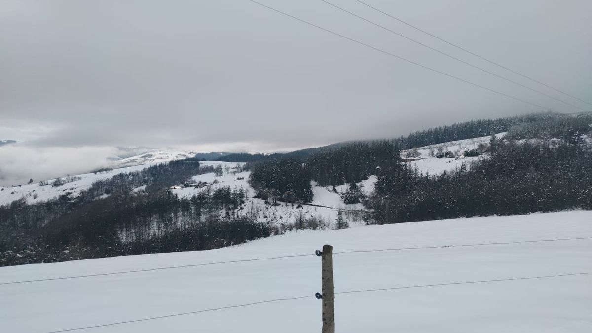 Paisaje nevado cercano a San Martín de Oscos