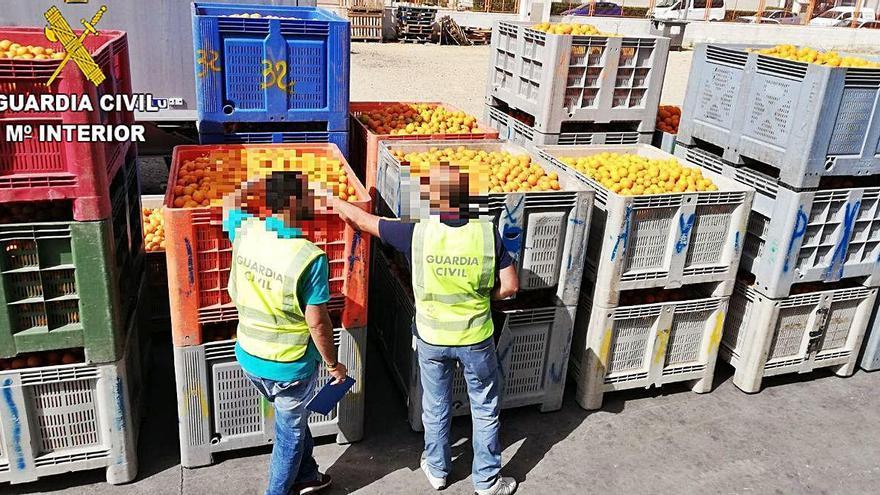 Detenido por apropiarse de 41.000 kilos de naranja robada