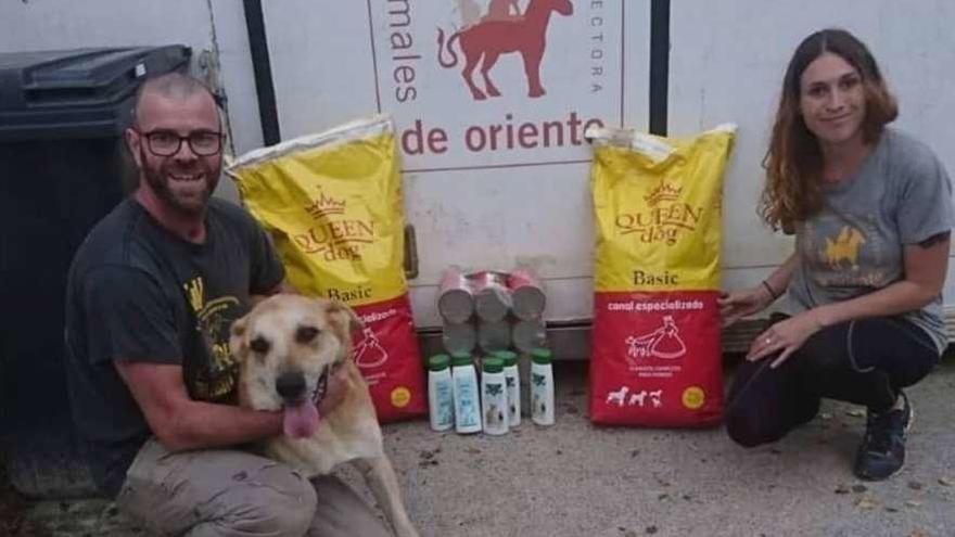 """La Protectora insta a """"regalar con responsabilidad"""" animales por Reyes"""